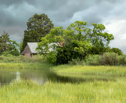house in the marsh land