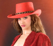 the cowgirl series - western sophistication